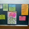 Альбом: Педагогічна рада для вчителів Пристінської ЗОШ І-ІІ ступенів